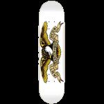 photo de la planche antihero classic eagle white 8.75